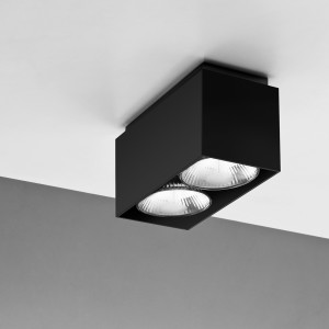Duo ceiling _ NEMO (1)