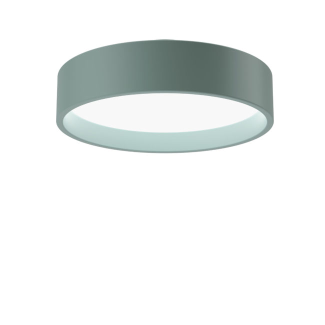 91591-5-2-06-260-450-Circle-Surface-PalePetroleum